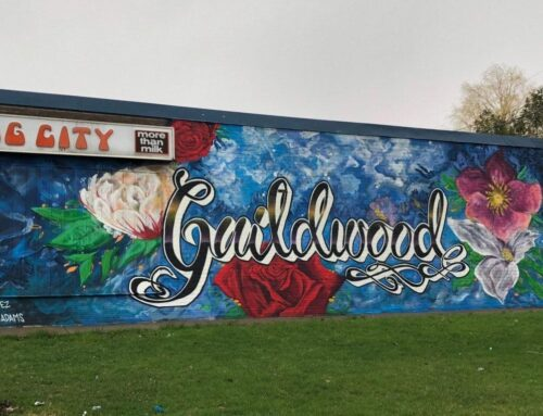 Must See Murals of Scarborough